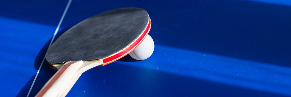 Remarkable Bexhill Community Table Tennis Active Rother Home Remodeling Inspirations Genioncuboardxyz