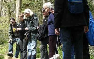 1066 Walking Festival – 13 to 21 May